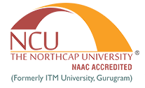 Logo ofThe Northcap University